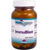 Immublast.jpg